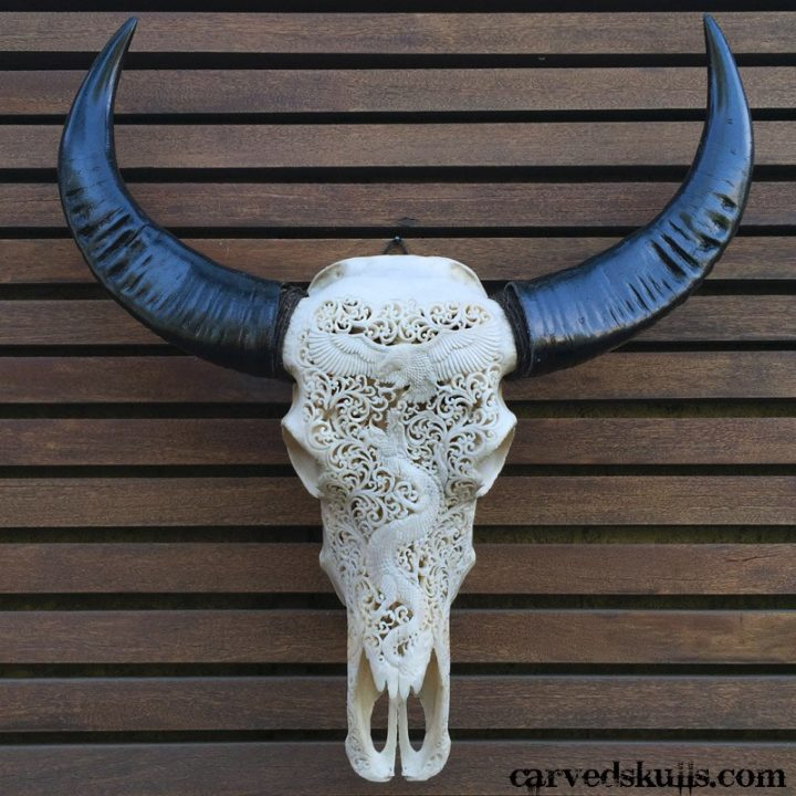 Carved Buffalo Skull with Eagle vs Dragon Design – White IMG 4152w 720x720