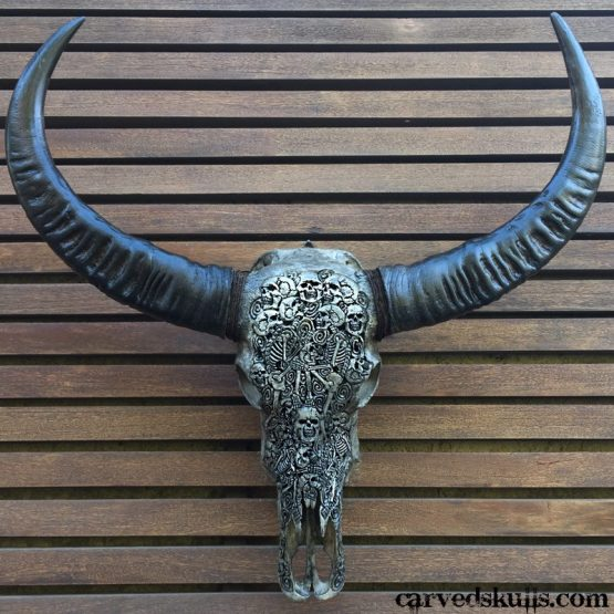 Carved Buffalo Skull with Skeleton Design – Grey IMG 4465w 555x555  Home page IMG 4465w 555x555
