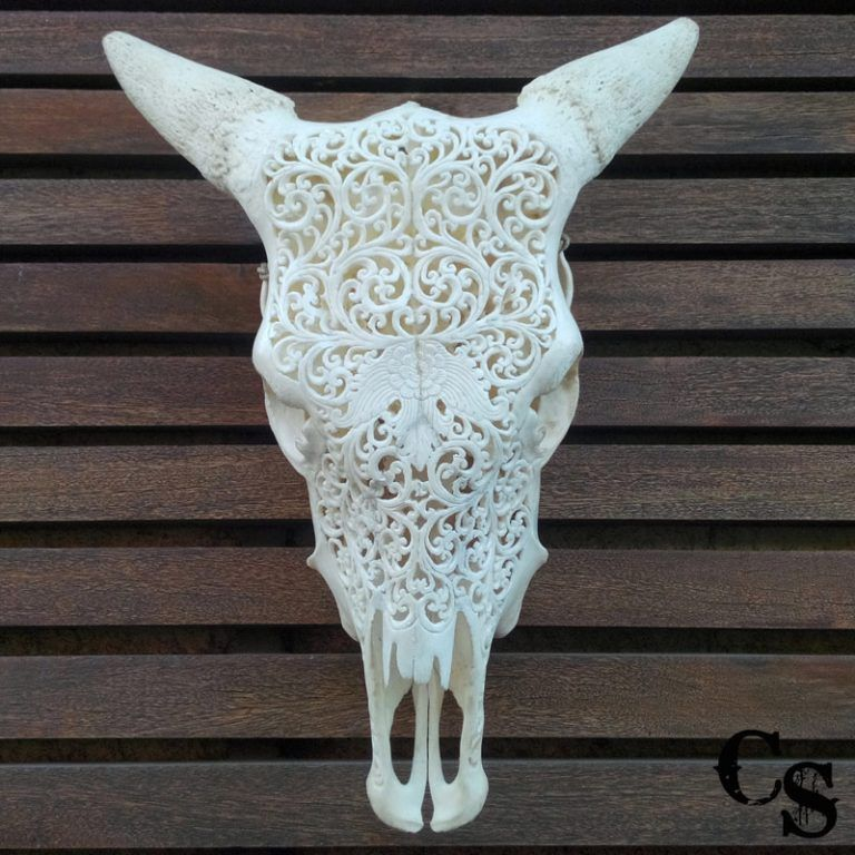 Carved Bull Cow Skull with Flower Design and Lace Horns IMG 20150507 082102copy 768x768