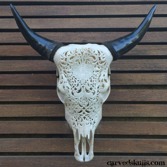 Carved Bull Cow Skull with Lotus Heart Design – White IMG 4272w 555x555
