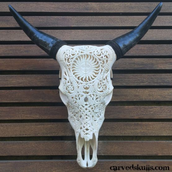 Carved Bull Cow Skull with Sun Design – White IMG 4250w 555x555