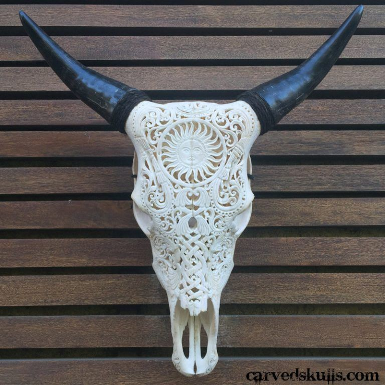 Carved Bull Cow Skull with Sun Design – White IMG 4250w 768x768