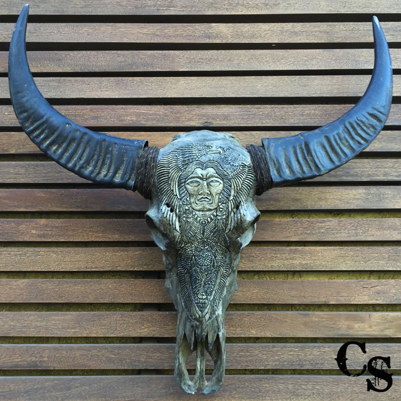 Carved buffalo skull with native american design grey