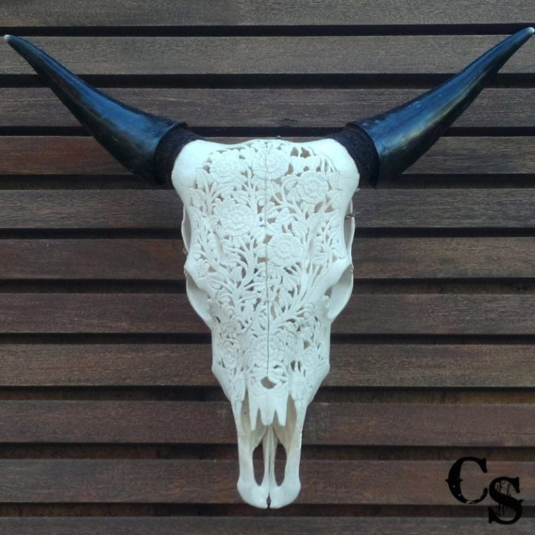 Carved Bull Cow Skull with Flowers Design – White 10w 768x768