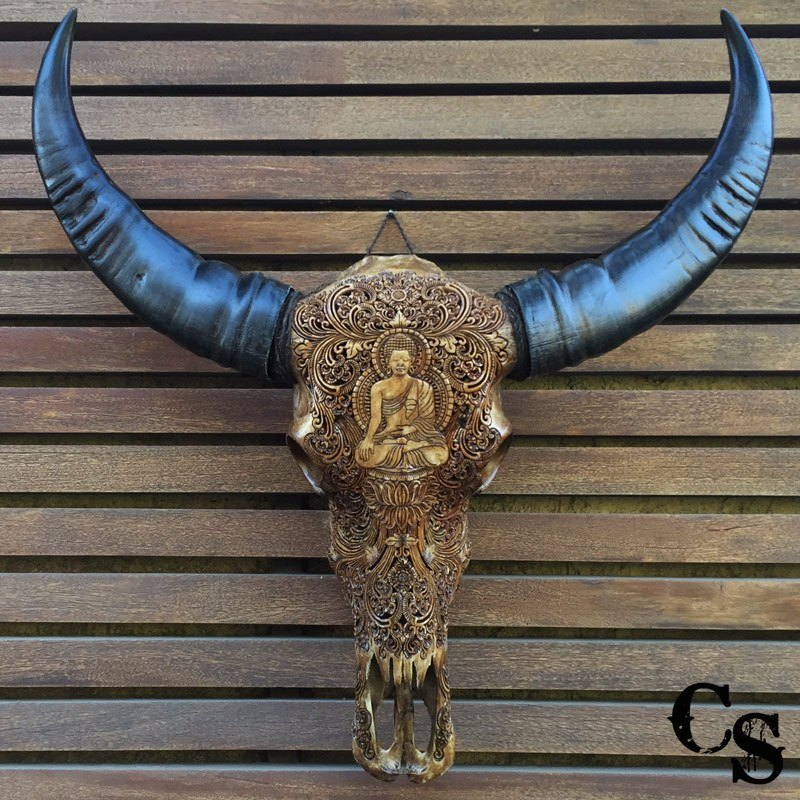 Carved buffalo skull with buddha design antique