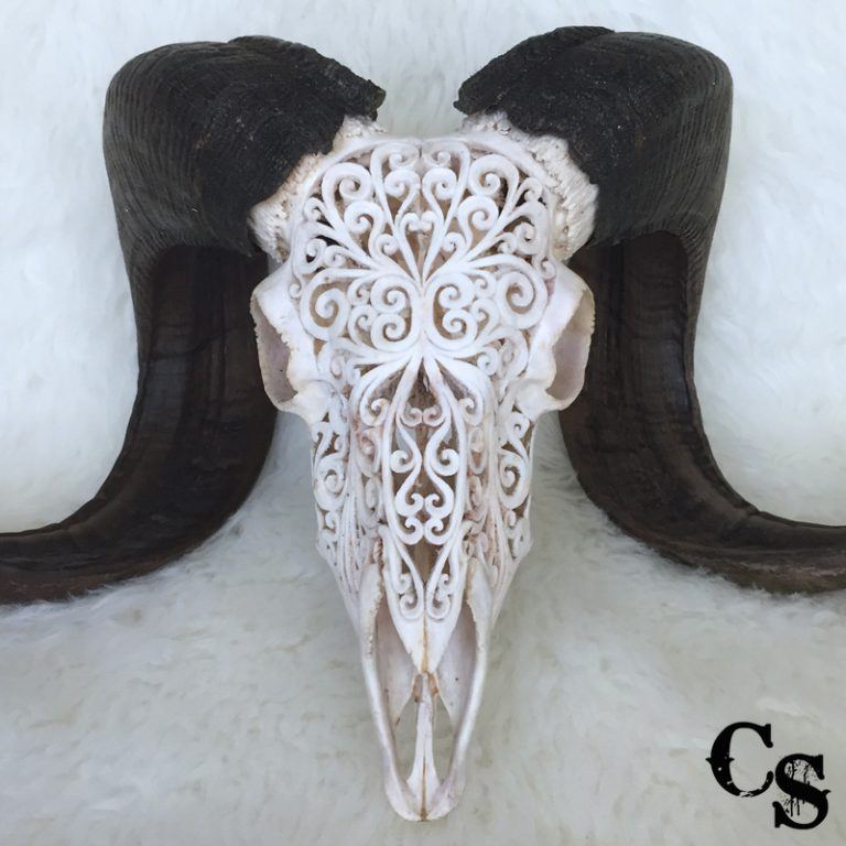 ram skull Carved Ram Skull with Tribal Design – White r2w 768x768
