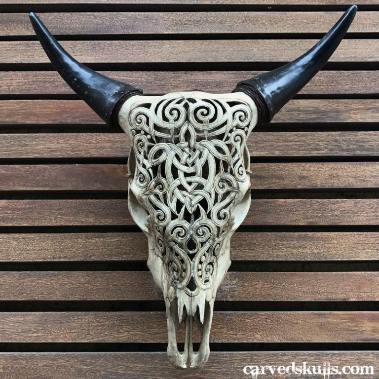 Carved Bull Cow Skull with Celtic Turtle Design – Antique IMG 0860dw 768x768